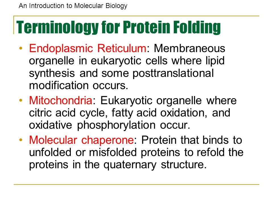 Terminology for Protein Folding