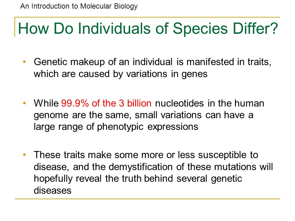 How Do Individuals of Species Differ