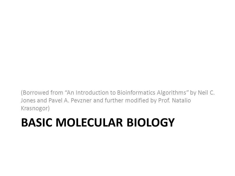 Basic Molecular Biology