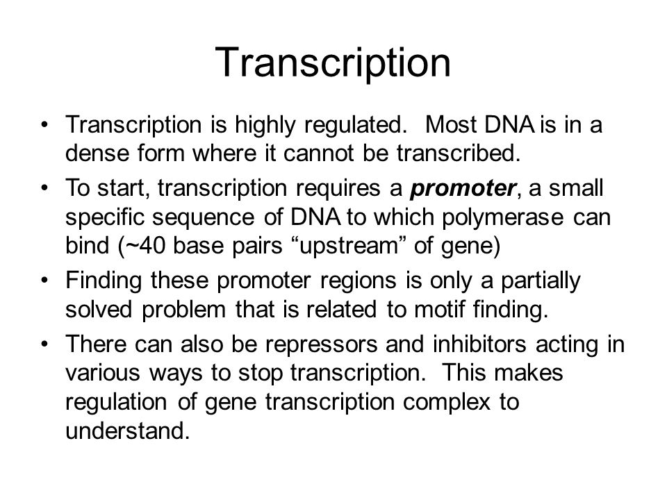 Transcription Transcription is highly regulated. Most DNA is in a dense form where it cannot be transcribed.
