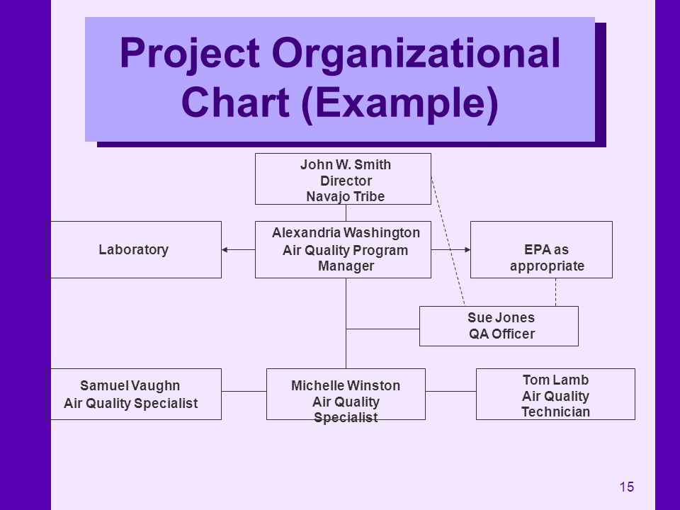 Project Organizational Chart (Example)