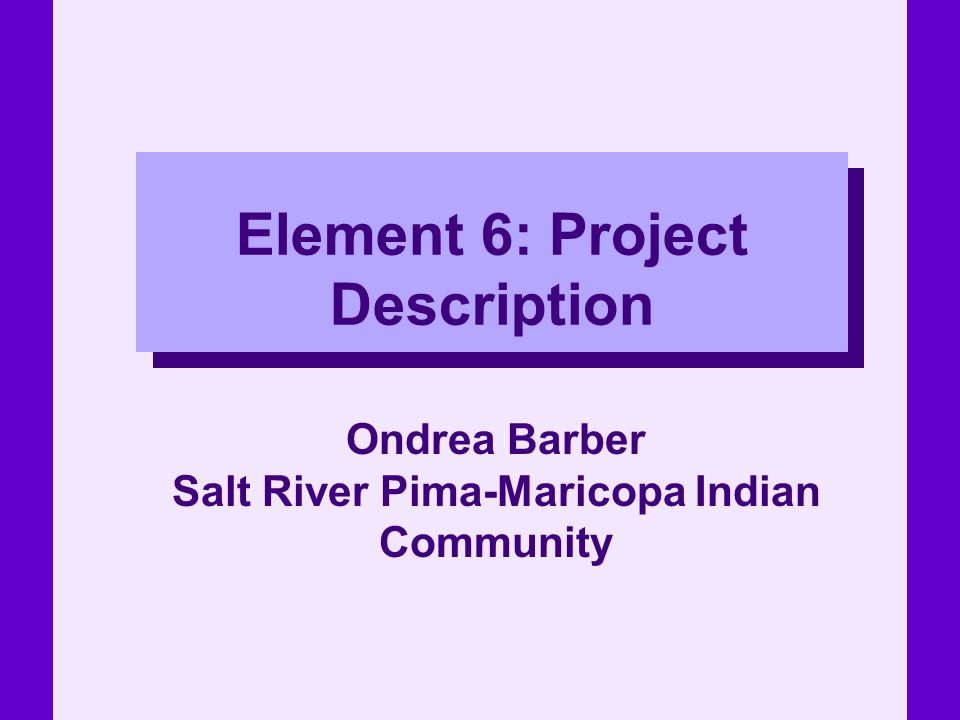Element 6: Project Description