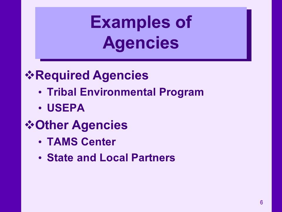 Examples of Agencies Required Agencies Other Agencies