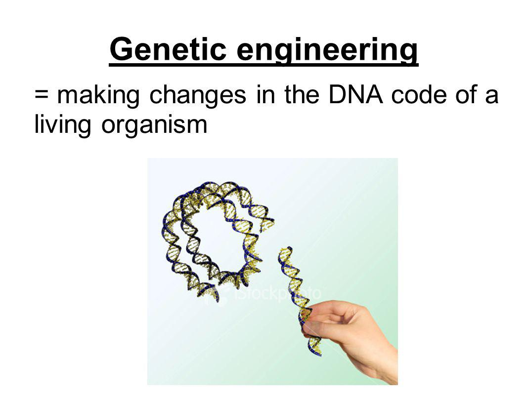 = making changes in the DNA code of a living organism