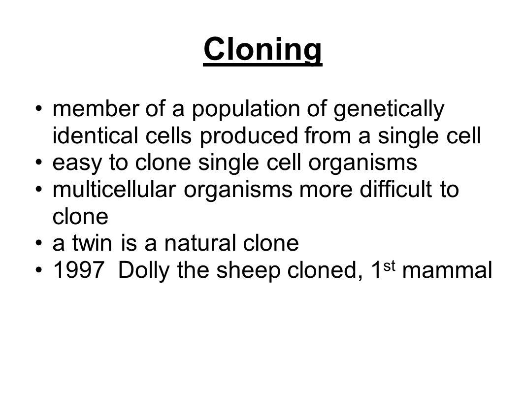 Cloning member of a population of genetically identical cells produced from a single cell. easy to clone single cell organisms.