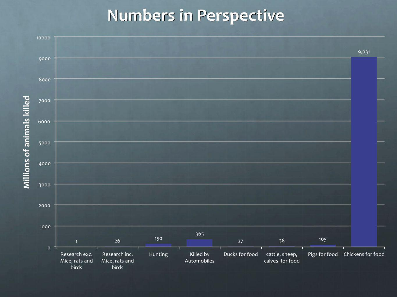 Numbers in Perspective