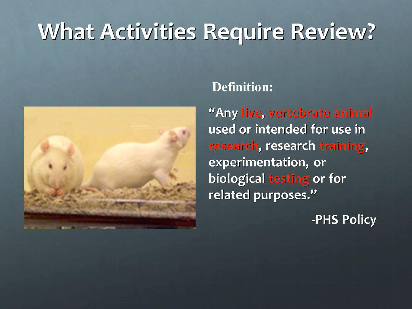 What Activities Require Review