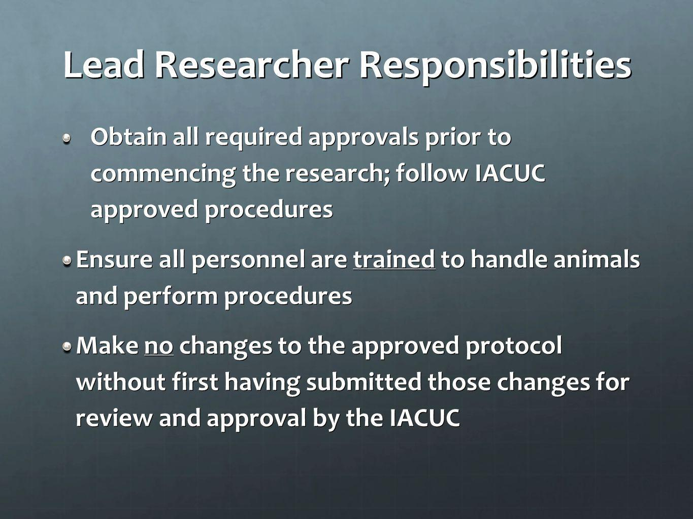 Lead Researcher Responsibilities
