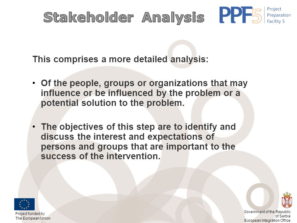 Stakeholder Analysis This comprises a more detailed analysis: