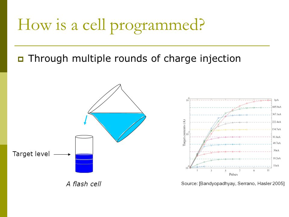How is a cell programmed