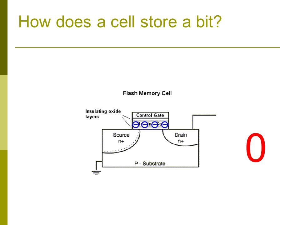 How does a cell store a bit