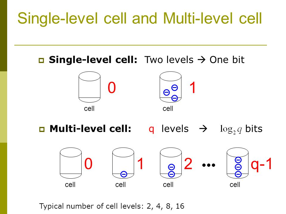 Single-level cell and Multi-level cell