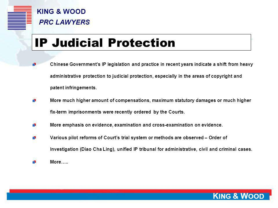 IP Judicial Protection
