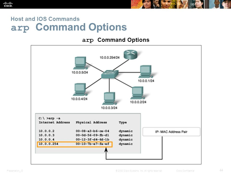 Host and IOS Commands arp Command Options
