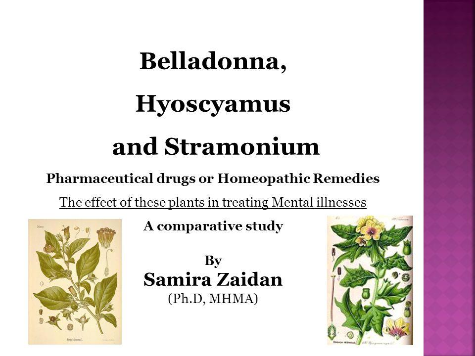 Belladonna, Hyoscyamus