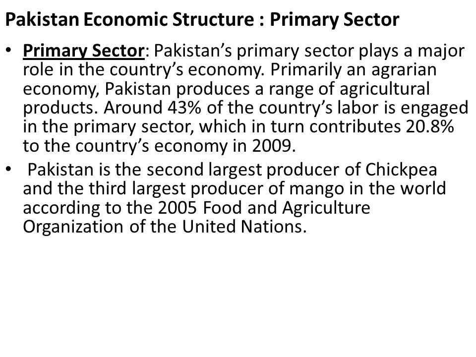 Pakistan Economic Structure : Primary Sector