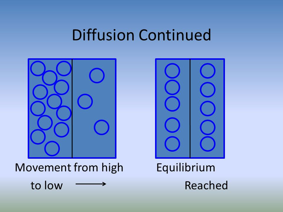 Movement from high Equilibrium to low Reached