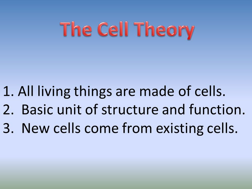 The Cell Theory 1. All living things are made of cells.