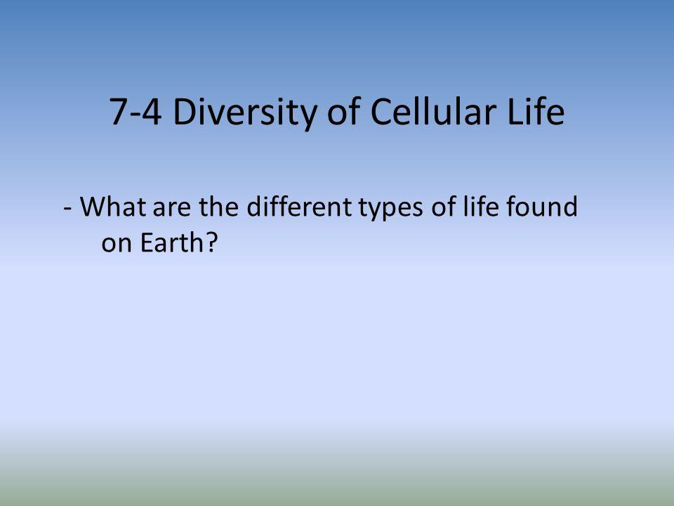 7-4 Diversity of Cellular Life