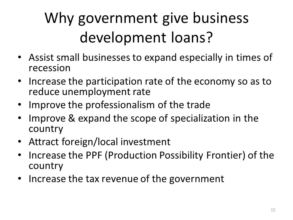 Why government give business development loans