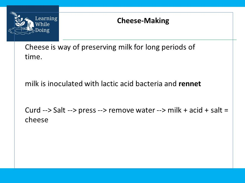 Cheese-Making Cheese is way of preserving milk for long periods of time. milk is inoculated with lactic acid bacteria and rennet.