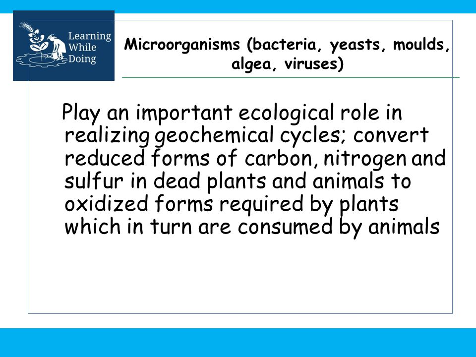 Microorganisms (bacteria, yeasts, moulds, algea, viruses)