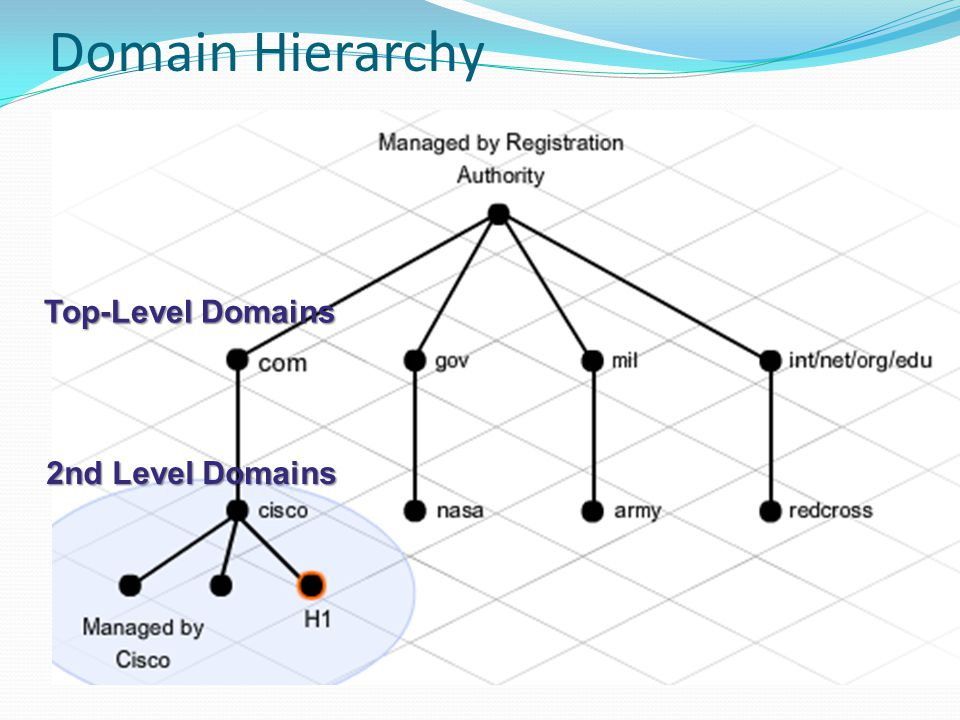 Domain Hierarchy Top-Level Domains 2nd Level Domains