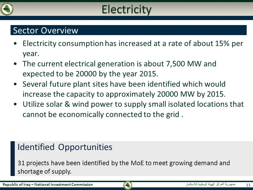 Electricity Sector Overview Identified Opportunities