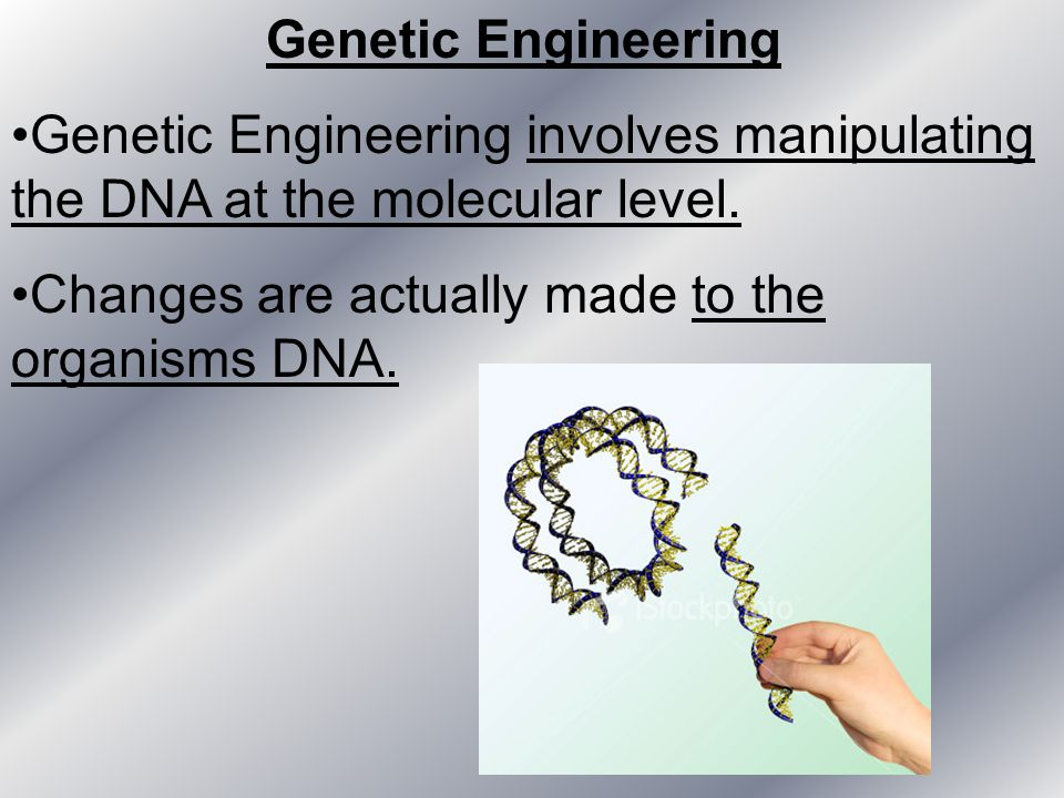 Genetic Engineering Genetic Engineering involves manipulating the DNA at the molecular level.