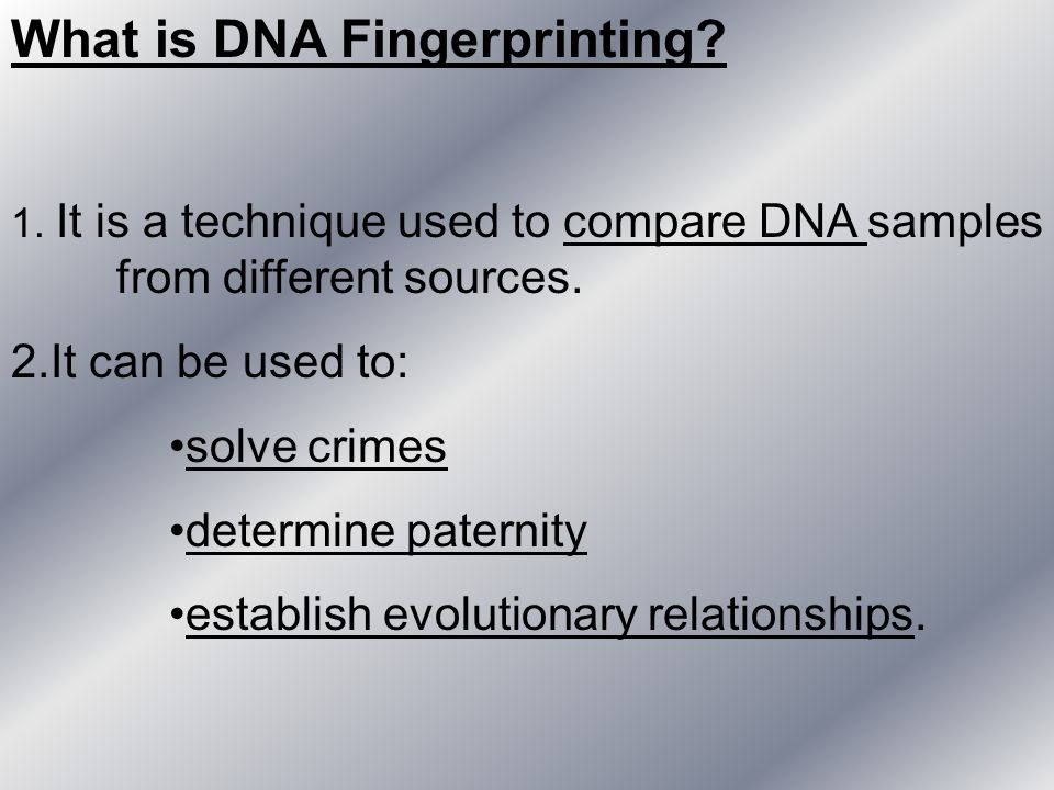 What is DNA Fingerprinting