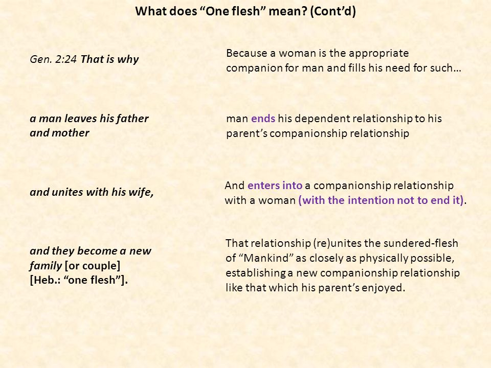 What does One flesh mean (Cont'd)
