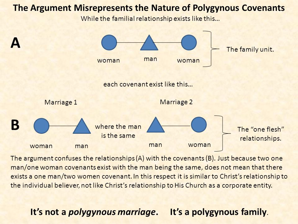 The Argument Misrepresents the Nature of Polygynous Covenants