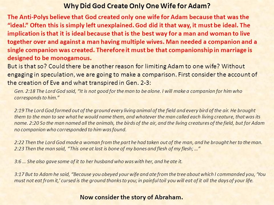 Why Did God Create Only One Wife for Adam