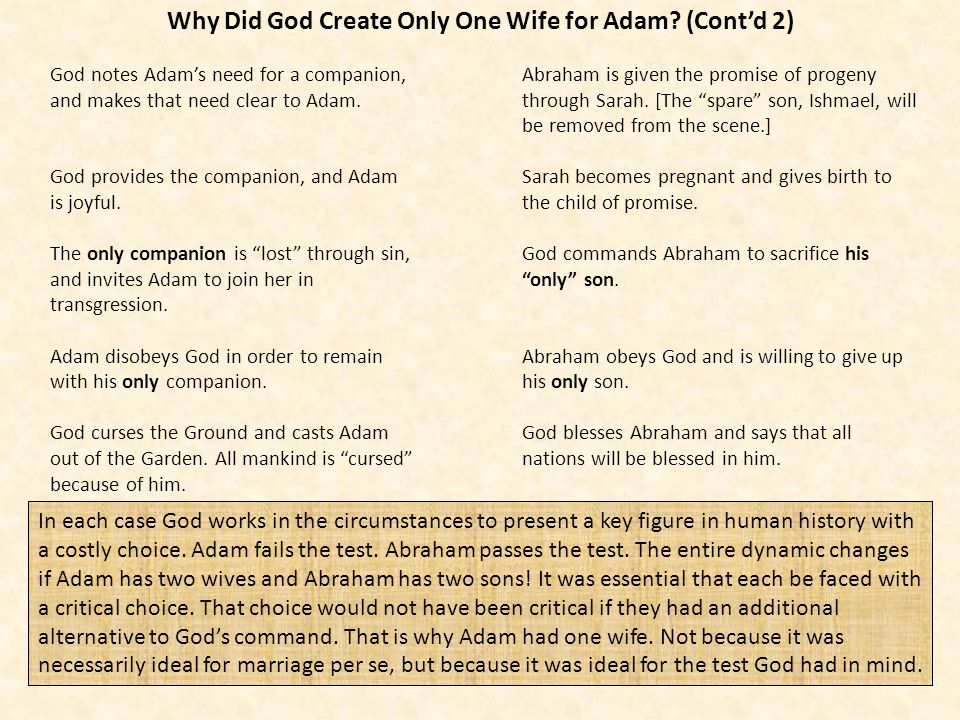 Why Did God Create Only One Wife for Adam (Cont'd 2)