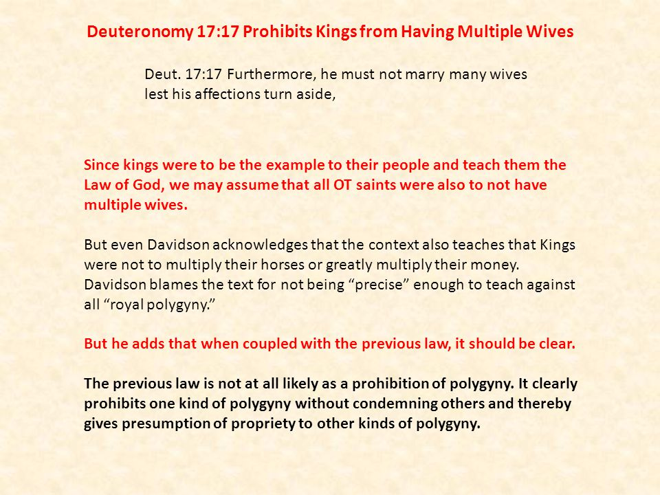Deuteronomy 17:17 Prohibits Kings from Having Multiple Wives