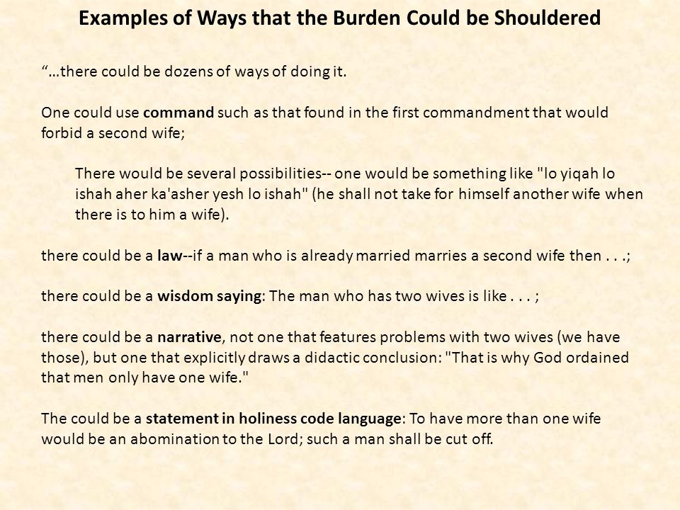 Examples of Ways that the Burden Could be Shouldered