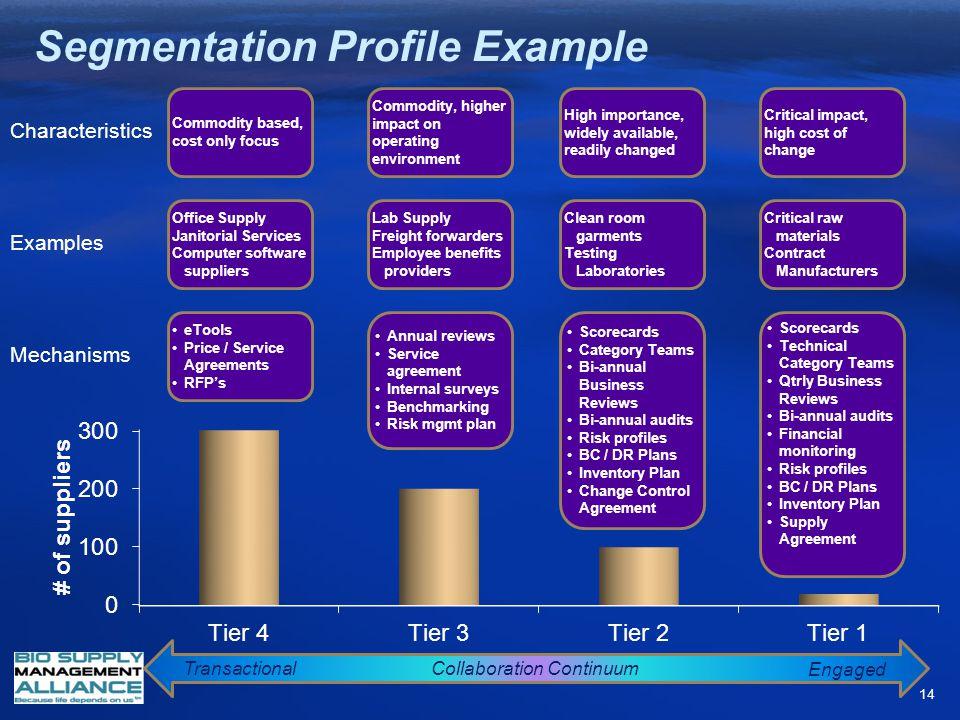 Segmentation Profile Example