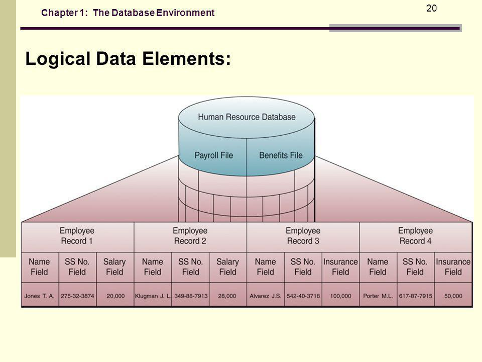Logical Data Elements: