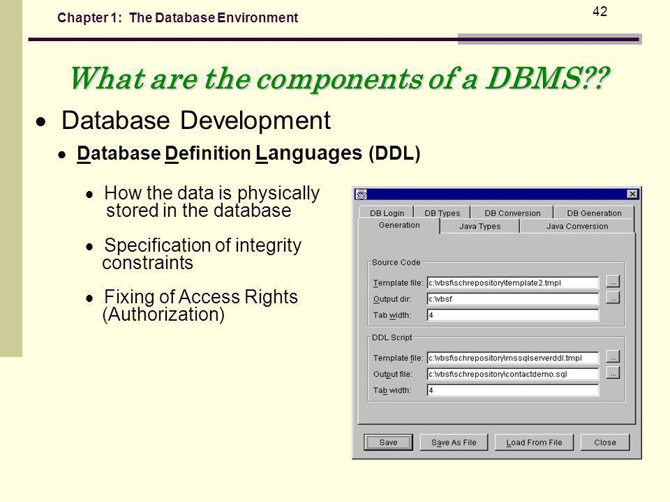 What are the components of a DBMS