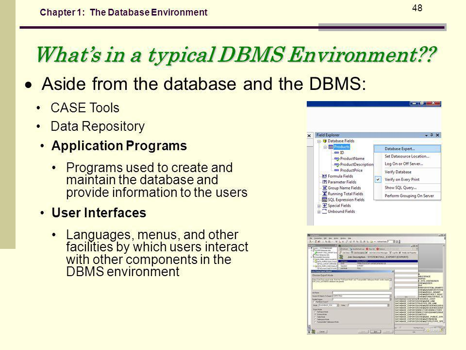 What's in a typical DBMS Environment