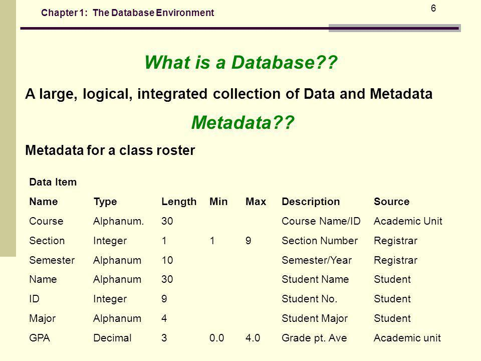 What is a Database Metadata