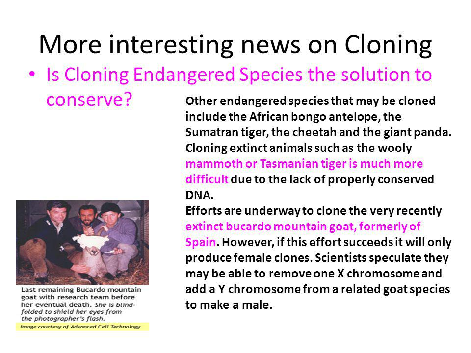 More interesting news on Cloning