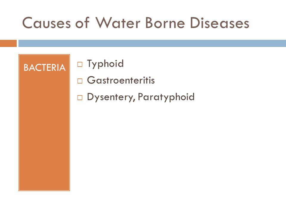 Causes of Water Borne Diseases
