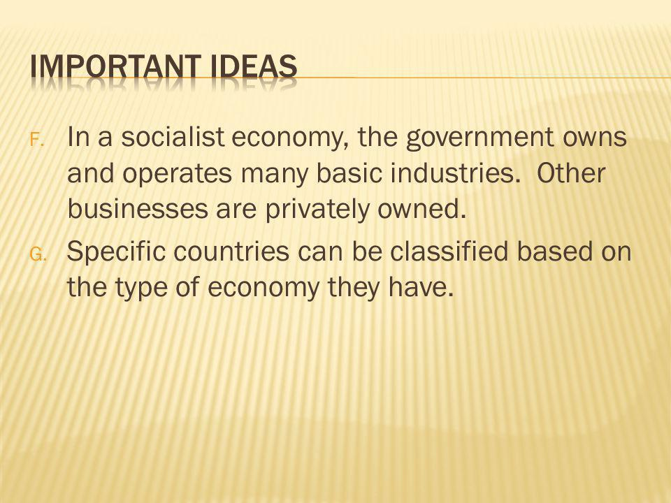 Important Ideas In a socialist economy, the government owns and operates many basic industries. Other businesses are privately owned.