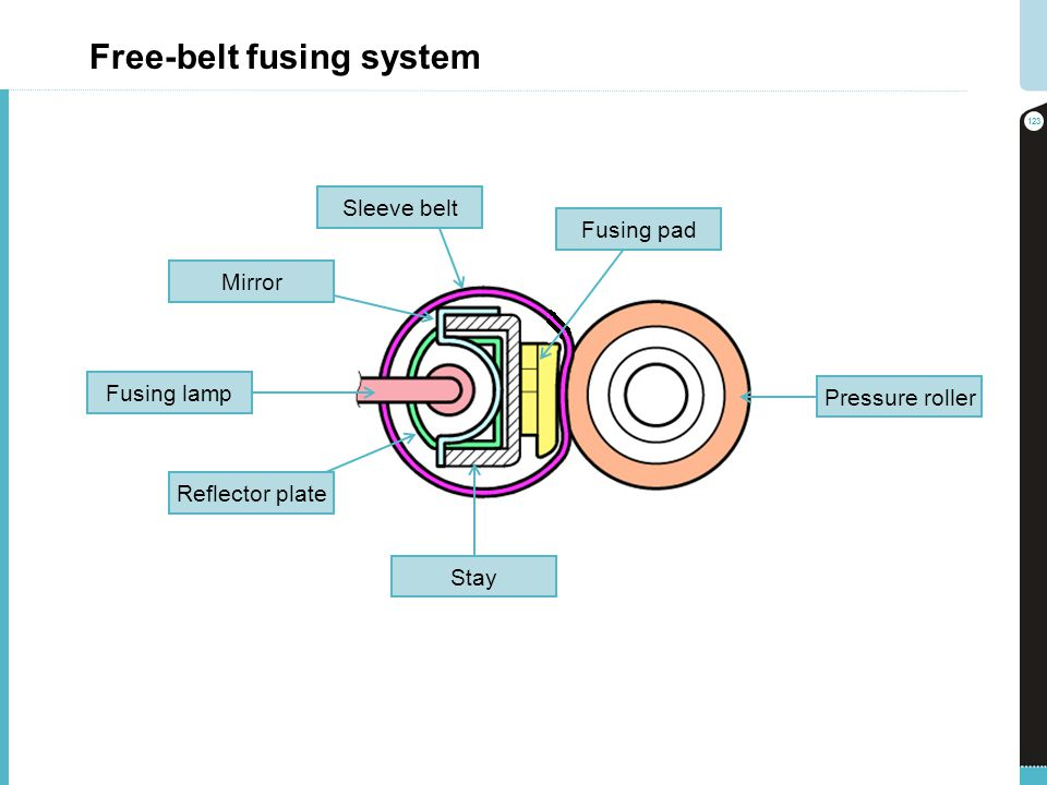 Free-belt fusing system