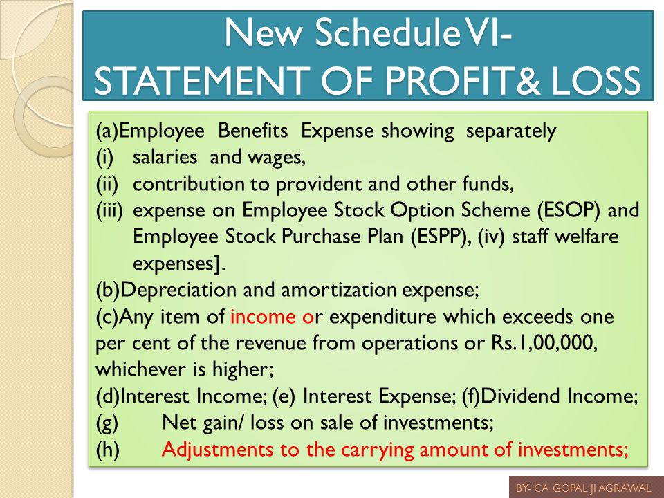 New Schedule VI- STATEMENT OF PROFIT& LOSS
