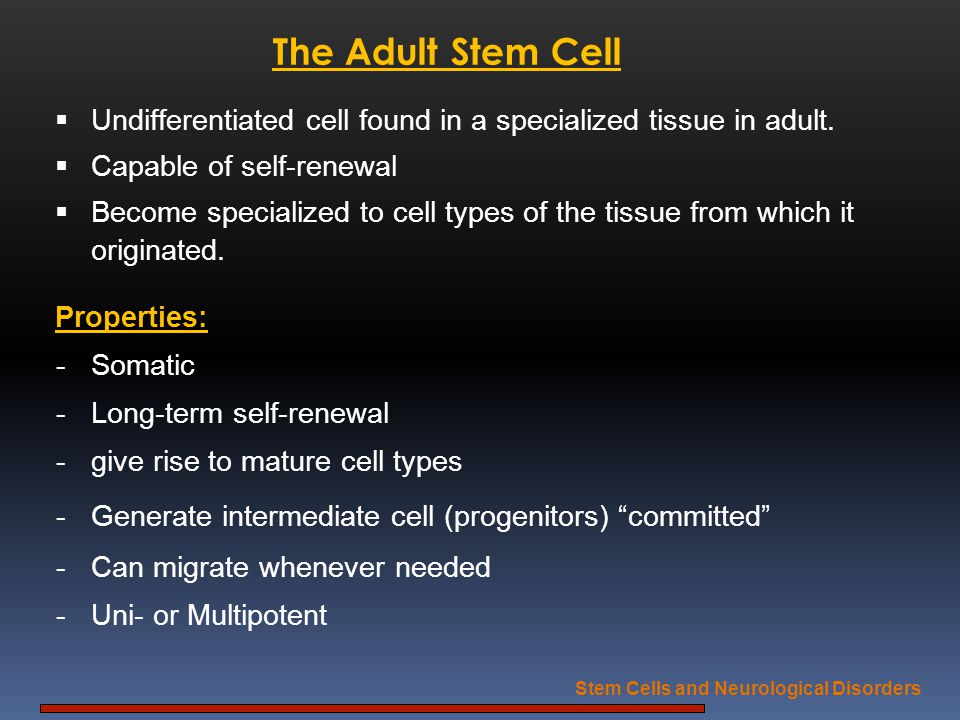 Stem Cells and Neurological Disorders