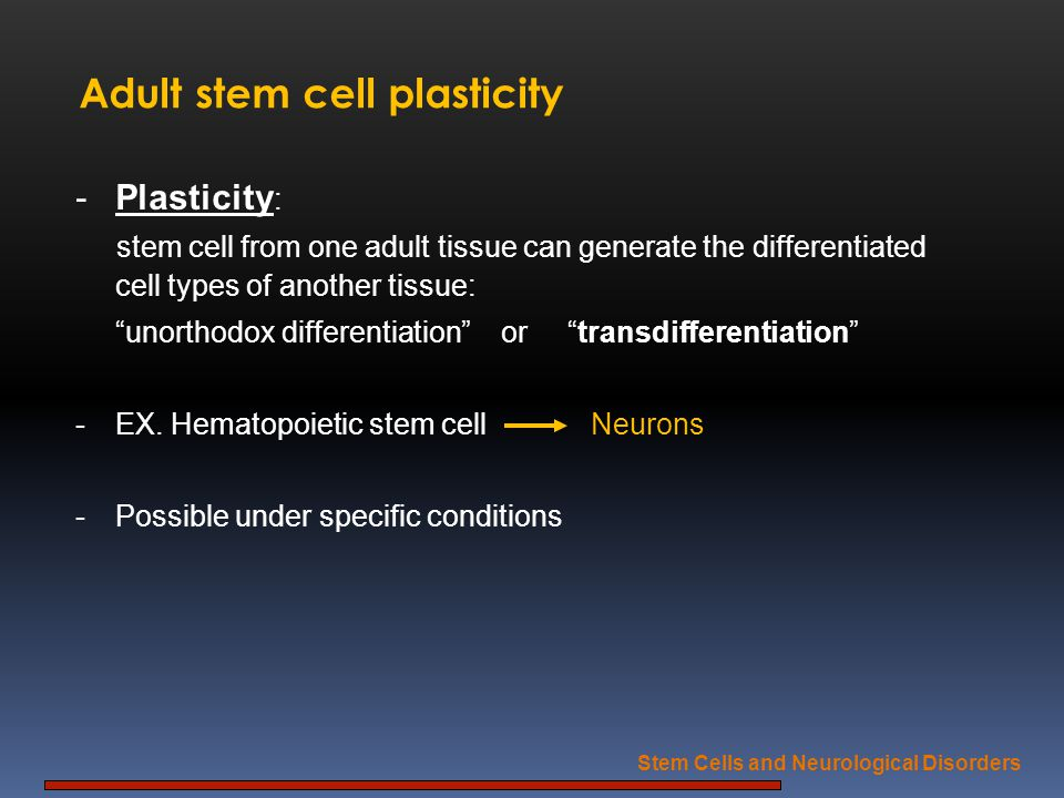 Adult stem cell plasticity