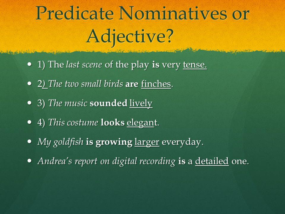 Predicate Nominatives or Adjective
