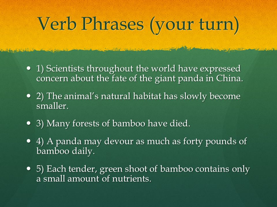 Verb Phrases (your turn)